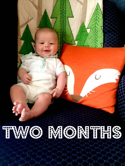 two-month-elliott-text